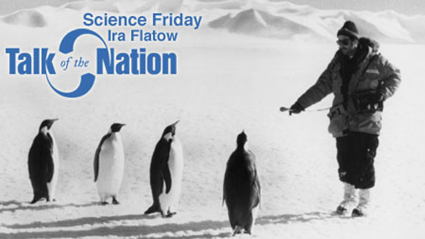 Ira Flatow, host of Science Friday edition of Talk of the Nation