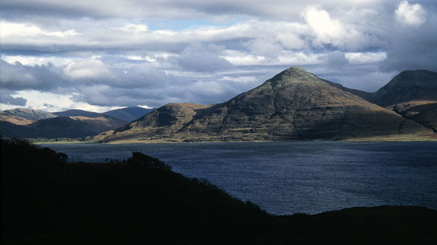 The island of Mull, off the coast of western Scotland, hosts an amazing diversity of life
