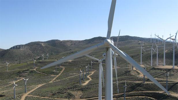 NOVA Bog Energy Gamble
