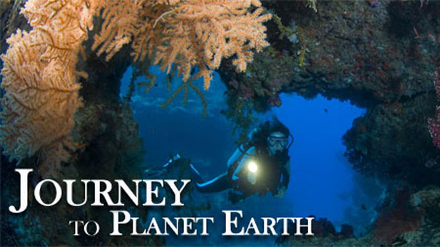 Journey to Planet Earth, State of the Ocean's Animals