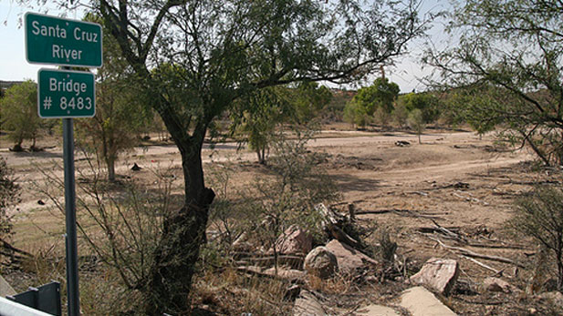 A dry section of the Santa Cruz River, near Tucson.